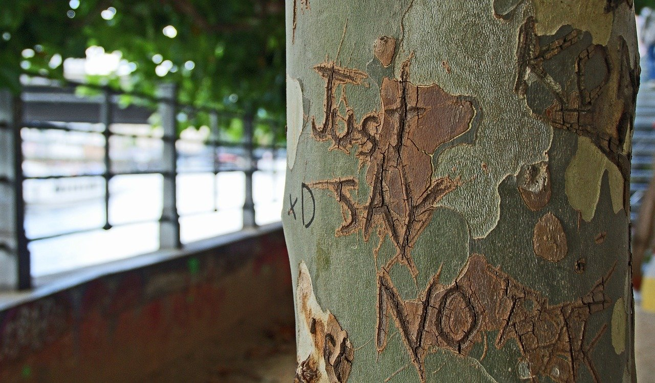 "a tree carving that says ""just say no,"" to remind you that you have the final say as a writer"